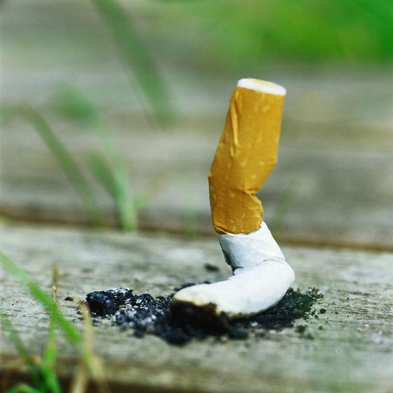 Rygeloven er vedtaget