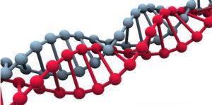 Forskere: DNA-opdagelse er et skridt på vejen mod ny kræftmedicin