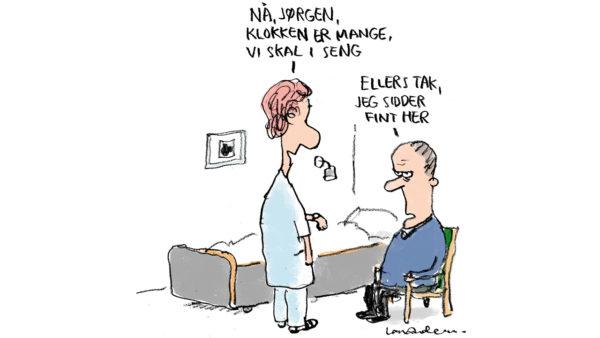 Molbohistorie om en sygeseng