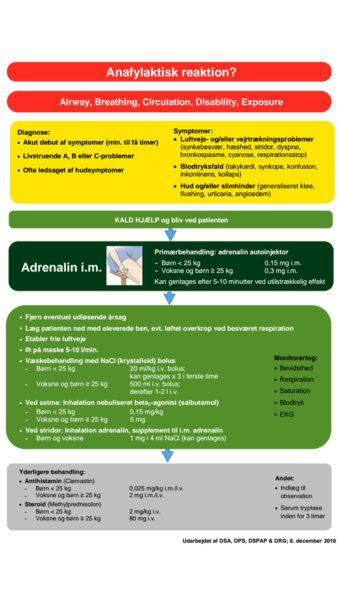 Ny retningslinje skal lægge anafylaksi-behandling lige til højrebenet