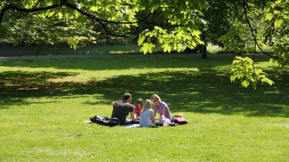 Adgang til parker modvirker lungeproblemer