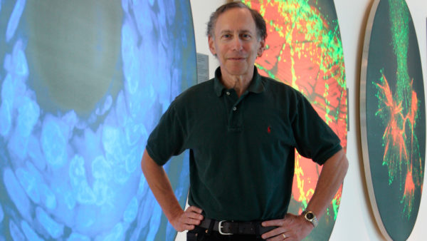Professor Robert Langer: Sådan bliver danske forskere mere succesfulde