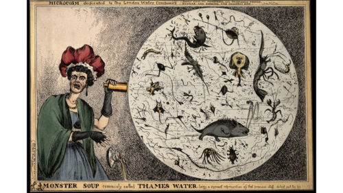 Global pandemi og rund fødselsdag har gjort medicinsk pioner relevant igen