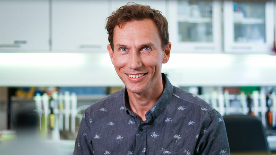 Professor vil træne immunforsvaret til at bekæmpe HIV