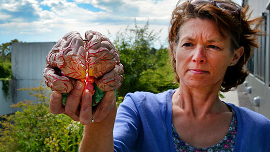 Træn hjernen og forbyg demens