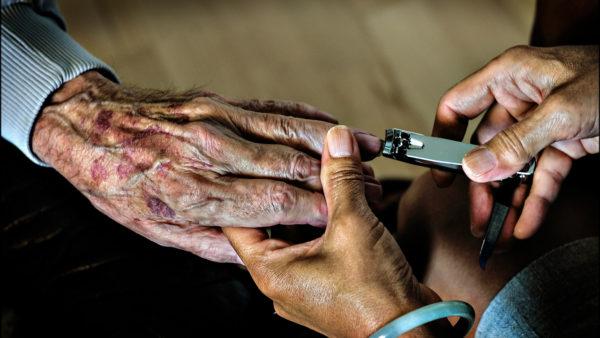Små kvalitetsforskelle mellem offentlige og private plejecentre