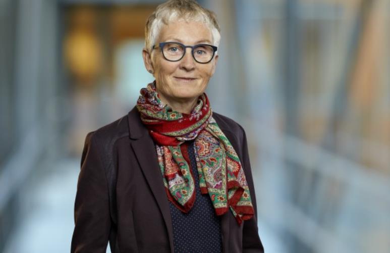 Sundhedsdirektør stopper efter 20 år